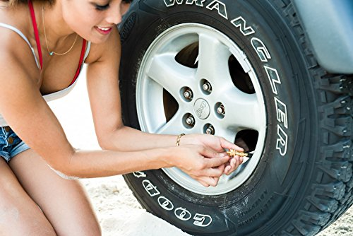 Staun Automatic Tire Deflators (Heavy Duty 15-55 PSI) by Staun (Image #2)