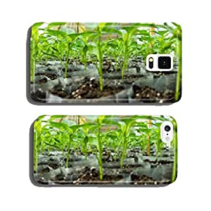 small pepper plants in a greenhouse for transplanting cell phone cover case iPhone6