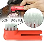 Dog Toothpaste and Toothbrush Set [REMOVES FOOD DEBRIS] Double Sided with Long Curved Handle [SUPER EASY CLEANING] - Best Soft Silicone Pet Toothbrush for Cats And Dogs [EXPANDABLE FINGER ENTRY] - Col 10