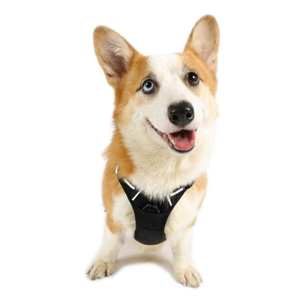 Rabbitgoo  Dog Harness No-Pull Pet Harness Adjustable Outdoor Pet Vest 3M Reflective Oxford Material Vest for Dogs Easy Control for Small Medium Large Dogs (Black, M) by Rabbitgoo