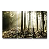 3 Piece Wall Art Painting Sunbeams Through Forest Prints On Canvas The Picture Landscape Pictures Oil For Home Modern Decoration Print Decor