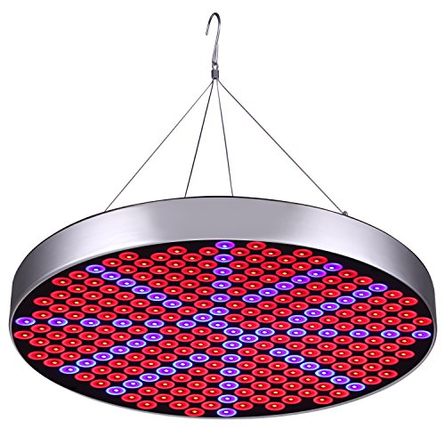 50W LED Plant Grow Lights , Shengsite UFO 250 LEDs Indoor Plants Growing Light Bulbs with Red Blue Spectrum Hydroponics Plant Hanging Kit for Germination,Vegetative&Flowering (Led Red Blue Plant)