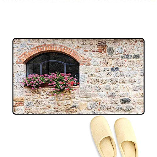 (Doormat Gothic Architecture Abandoned Old Stone House Vintage Stairs in Tuscany Bath Mats Carpet Ivory Pink and Salmon 16