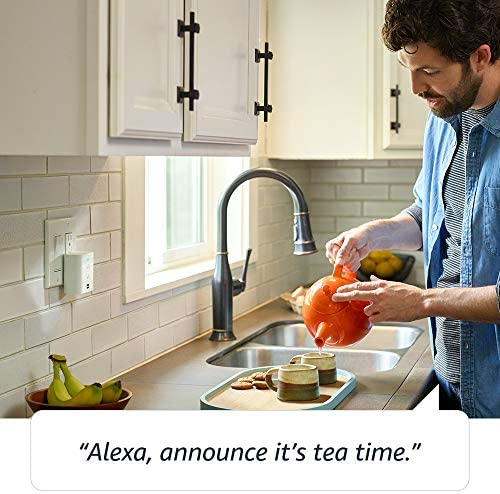 Echo Flex  Plugin mini smart speaker with Alexa