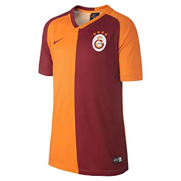 396b27e353d Nike 2018-2019 Galatasaray Home Supporters Football Soccer T-Shirt Camiseta  (Kids): Amazon.es: Deportes y aire libre