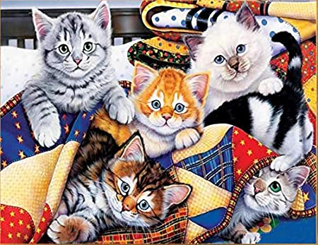 Large Premium Full Canvas DIY 5D Diamond Painting Kit - 20X16 Inches Adorable Cat Design - Relaxing and Fun for Kids and Adults - Tool Kit Includes All Accessories - Home Decor Arts and Crafts Craftymint