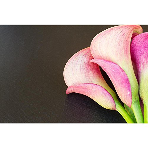 - PB Pink Calla Lilly Flowers Unframed Canvas Painting 30 x 20inch