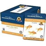 Hammermill Copy amp; Multipurpose Paper - Letter - 8.50quot; x 11quot; - 20 lb - 97 Brightness - 5000 / Carton - White