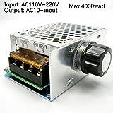 furnace induction motor - AC 110V~220V SCR Voltage Regulator adjust Motor Speed Control Dimmer Thermostat