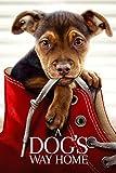 Dog's Way Home, A [Blu-ray]