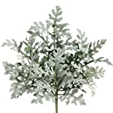 11'' Flocked Dusty Miller Silk Plant -Green/Gray (case of 24)