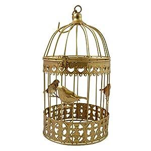 PrimoLiving Deko Metal pájaro Jaula Oro pájaro P de 849 Talla L ...