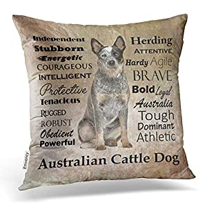 Accrocn Throw Pillow Covers Australian Cattle Dog With Alphabet Gray Vintage Style Cushion Decorative Pillowcases Polyester 18 x 18 Inch Square Pillowcase Hidden Zipper 1