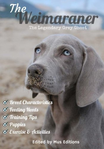 Legendary Grey Ghost ()