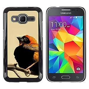 CASER CASES / Samsung Galaxy Core Prime SM-G360 / Cute Orange & Black Bird / Delgado Negro Plástico caso cubierta Shell Armor Funda Case Cover