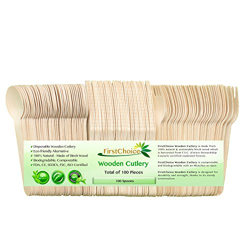 "Disposable Wooden Spoons - 100 Piece Total - 6"" Length Ec..."