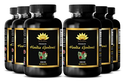 Burn fat pills - HOODIA GORDONII EXTRACT 2000mg - Belly fat supplement - 6 Bottles 360 Tablets by SKIN CARE SOLUTIONS