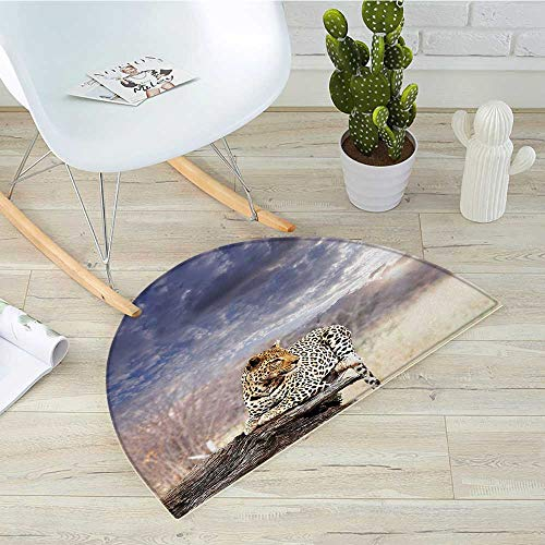 1 Light Bath Ripple (Safari Half Round Door mats Leopard on Tree Trunk Under Last Sunlights of The Day Sunset Dark Cloudscape Bathroom Mat H 15.7