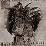 Orenda Only Death Lives Here (Cd)