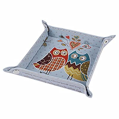 Wall of Dragon 1PC Fashion Blue Owl Faith Cute Design Kid Girl PU Leather Mens Catchall Change Key Wallet Coin Box Storage Tray Valet