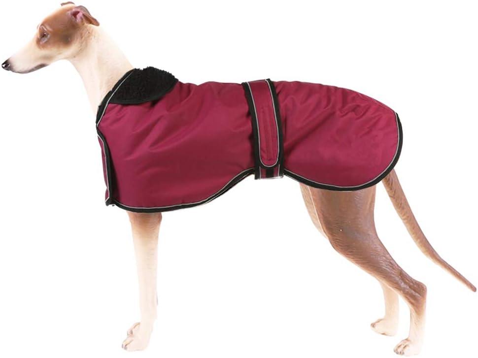 Pethiy Chaqueta Impermeable para Perros, Abrigo de Invierno para Perros con Forro de vellón cálido, Ropa para Perros al Aire Libre XXL (Back Length 71CM / 28in) Rojo