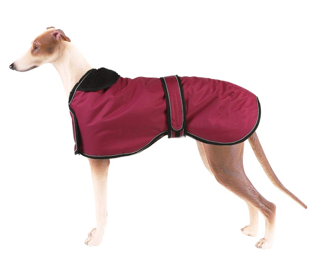 Pethiy Chaqueta Impermeable para Perro Abrigo de Invierno para Perro con Forro Polar c/álido Ropa para Perro al Aire Libre con Bandas Ajustables para Perros medianos y Grandes