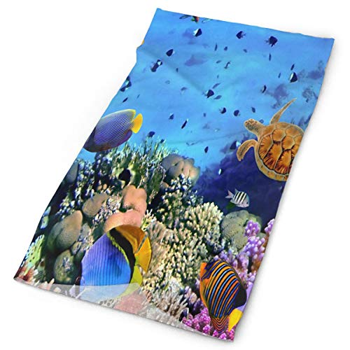 Airealy Variety Headscarf Custome Fish Corals Turtle Beautiful Underwater Headband Sports Headwear Outdoor Scarf Mask Neck Gaiter Head Wrap Sweatband