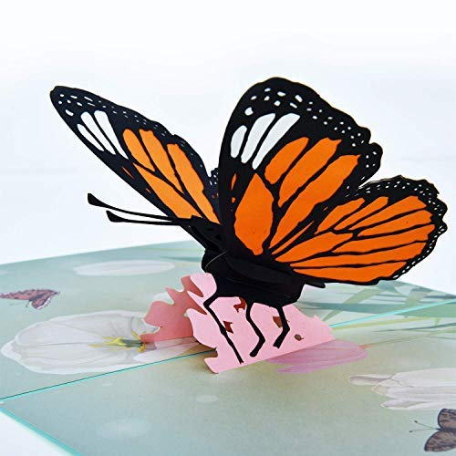 Loyocgo 3D Pop Up Card, Pop-Up Happy Birthday Cards with Envelopes for Thanksgiving day, Christmas, Birthday, Wedding, Greeting Card Gradution Anniversary, Mother's and Father's day, Gift. (butterfly) ()