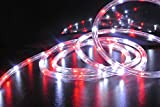 17.7FT Bi-Color Red and White LED Flexible Rope Light Kit For Indoor / Outdoor Lighting, Home, Garden, Patio, Shop Windows, Christmas, Party, Event (17.7FT)
