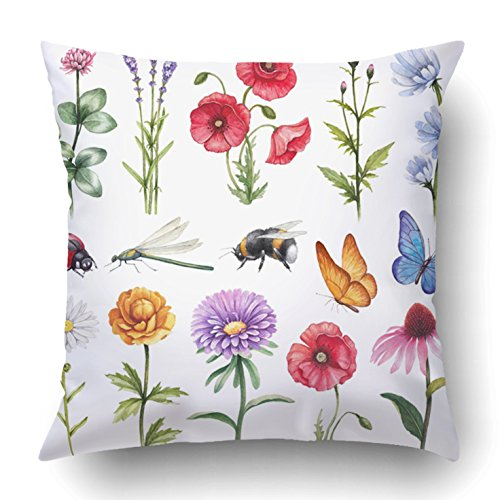 Emvency Throw Pillow Covers Aster Watercolor Illustrations Of Wild Flowers And Insect Daisy Butterfly Herbs 18 x 18 Inch Square With Hidden Zipper Polyester Home Sofa Cushion Decorative - Daisy Pillow Bolster