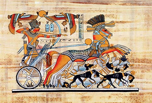 Yeele 7x5ft Ancient Egypt Mural Background for Photography Mythology Egyptian Gods Old Fresco Backdrop Hieroglyphic History Religion Culture Kids Children Photo Booth Shoot Vinyl Studio Props