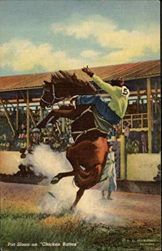 Pat Sloan on Chicken Buttes Rodeos Original Vintage Postcard (Rodeo Chicken)