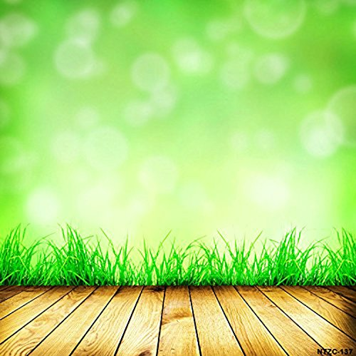 5x65ft-background-photography-studio-backdrops-green-wall-with-grass-wood-floor-for-thick-ntzc-137