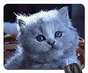 Cute grey kitty in basket Mouse Pad, Mousepad (Cats Mouse Pad, 10.2 x 8.3 x 0.12 inches)