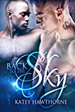 Back to the Sky (Elementals Book 2)
