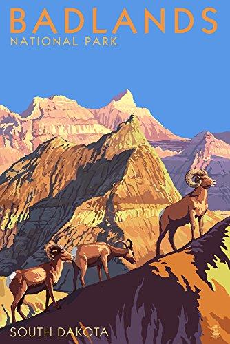Badlands National Park, South Dakota - Bighorn Sheep (9x12 Art Print, Wall Decor Travel Poster)