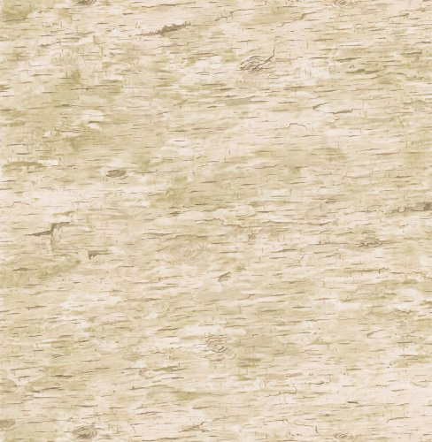 Brewster 431-7292 Northwoods Lodge Birchbark Wallpaper, 20.5-Inch by 396-Inch, Neutral (Bark Wallpaper)