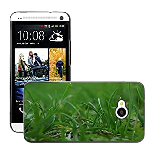 Hot Style Cell Phone PC Hard Case Cover // M00309901 Grass Nature Artistic Photos // HTC One M7