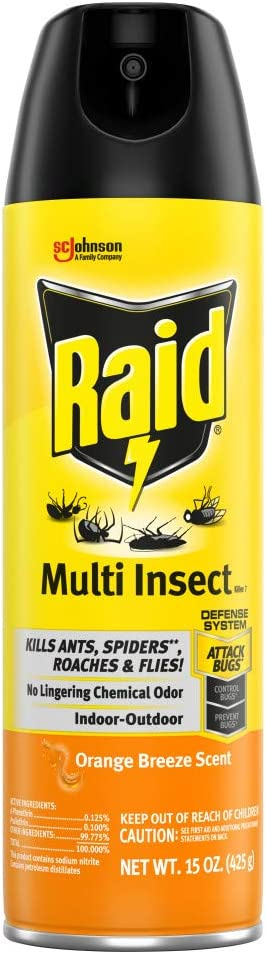Raid Multi Insect Killer, Kills Ants, Spiders, Roaches and Flies, For Indoor and Outdoor use, Orange Breeze, 15 Oz