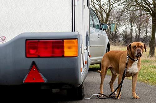 51NWQhcRXXL DogSitter - mobiler Ankerpunkt für Ihren Hund (Camping Wohnmobil Wohnwagen) (SET1)