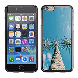For Apple iPhone 6 Plus(5.5 inches)Case , Trees Three Sky Blue Clear - Diseño Patrón Teléfono Caso Cubierta Case Bumper Duro Protección Case Cover Funda