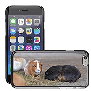 """Hot Style Cell Phone PC Hard Case Cover // M00130905 Guinea Pig Zoo Sweet // Apple iPhone 6 4.7"""""""