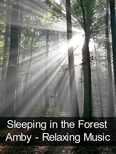 Sleeping in the Forest - Amby - Relaxing Music