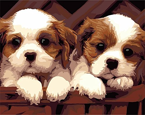 [, Wooden Framed or Not ] Diy Oil Painting by Numbers, Paint by Number Kits - Two Cute Puppies Dog 1620 inches - PBN Kit for Adults Girls Kids Christmas - D119