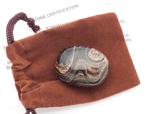 Diopside Quartz Ring - Fundamental Rockhound Products: Stromatolite Tumbled Stone from Peru (Extra Large)