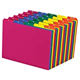 Pendaflex Poly File Guides, 1-31, 1/5 Cut Top Tabs, Letter, Assorted Colors, Daily 1-31,(40143)