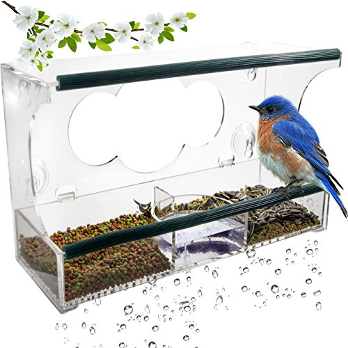 Birdious Deluxe Window Bird Feeder with Strong Suction Cups & Seed Tray, Enjoy Clear View Wild Birds. Large Squirrel Proof Birdhouse for Outdoors Mounted on Outside Glass. Best Gift (Royal Bird Feeder)