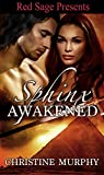 Sphinx Awakened (The Sphinx Warriors Series Book 5)