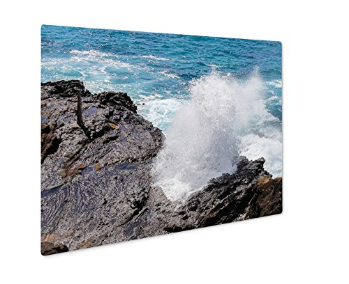 Ashley Giclee Metal Panel Print, Close Up Image Of The Famous Halona Blowhole Oahu Hawaii, Wall Art Decor, Floating Frame, Ready to Hang 16x20, AG6403258 by Ashley Giclee