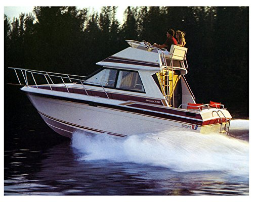 1982 Wellcraft 260 Sedan Cruiser Power Boat Factory ()